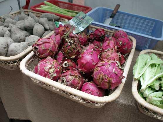Island East Markets, Hong Kong