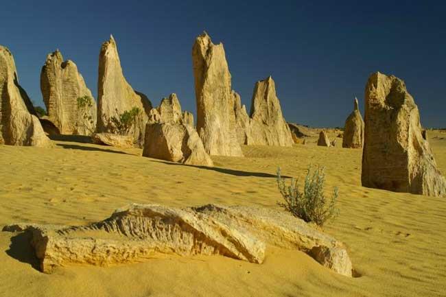 The Pinnacles and Nambung National Park Australia