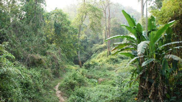 Wellness Meets Outdoor Adventure in Chiang Rai