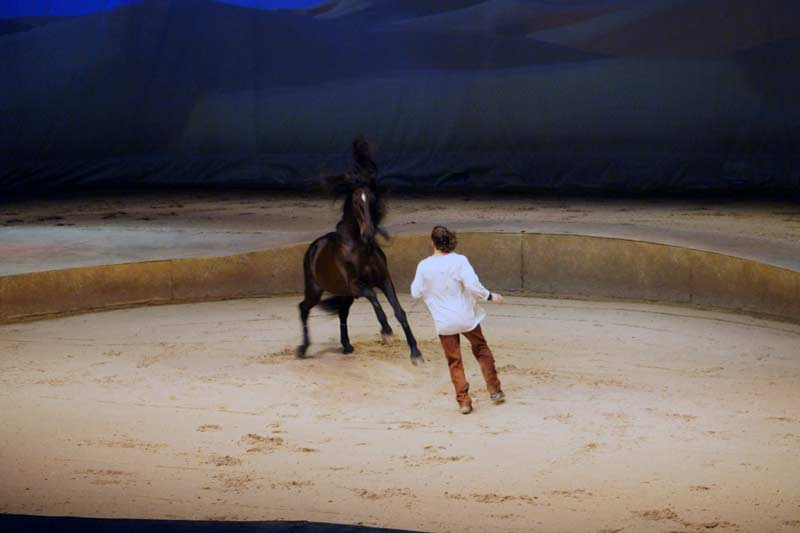 Cavalia_Hong_Kong_Preview_01