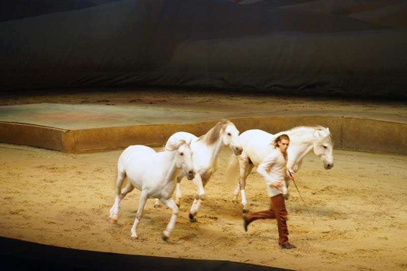 Cavalia_Hong_Kong_Preview_1
