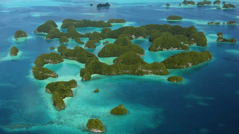 The Palau Pacific Resort: An Island Paradise