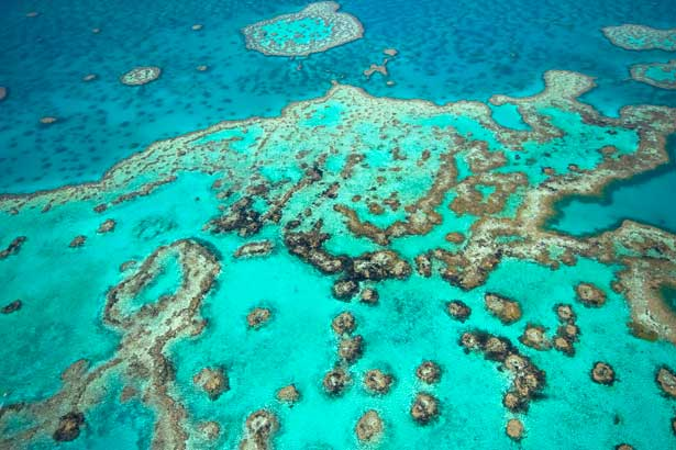 Destination Guide: Great Barrier Reef, Australia